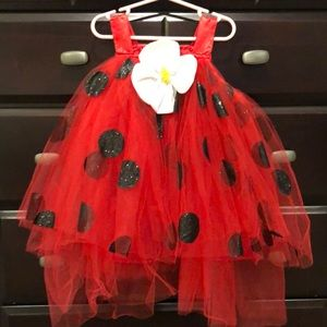 Pottery barn kids lady bug costume 12-24m